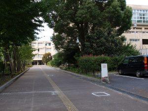 Minamitama